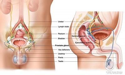 গনোরিয়া রোগের লক্ষণ ও প্রতিকার