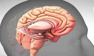 How Can Treatment Change the Depression Brain?