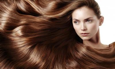 Some Effective Oils That Can Help Prevent Hair Fall