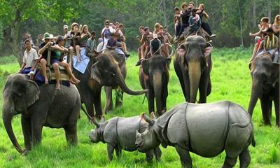 ভারতীয় উল্লেখযোগ্য ভ্রমন স্থান কাজিরাঙ্গা