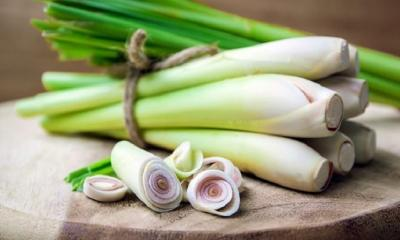 What is Lemongrass? How To Use Lemongrass ?