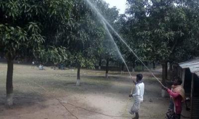 আমের দেশ চাঁপাইনবাবগঞ্জ সম্পর্কে জানুন